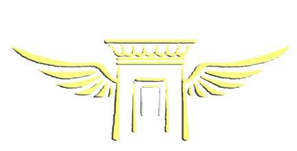 لوگوی VAEZI WIN