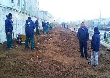 انتخاب گونه های گیاهی فضای سبز، متناسب با شرایط اقلیمی شهر قزوین انجام می شود