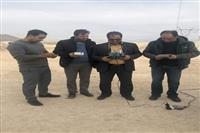 نظارت بر عملکرد آزمایشگاههای معتمد در استان یزد