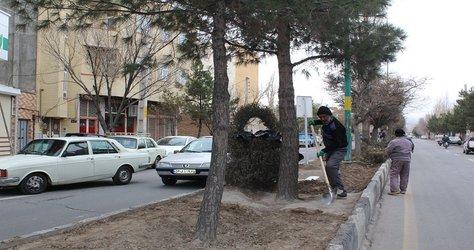 بیل کاری درختان بلوار نواب صفوی