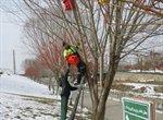 مهربانی به پرندگان در روزهای برفی
