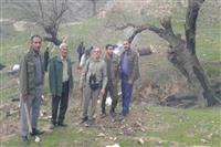 همکاری محیط زیست و منابع طبیعی در باشت منجر به دستگیری متخلف زغال گیر شد.