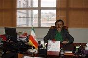 افتتاح پروژه های راهسازی به مناسبت دهه فجر