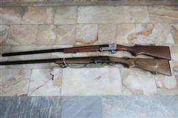 کشف و ضبط دو قبضه اسلحه شکاری در شهرستان گرگان