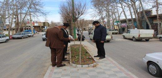آغاز عملیات گلکاری در بلوار شهید طالبیان
