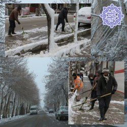 تلاش نیروهای شهرداری جغتای در پی بارش برف زیبای زمستانی