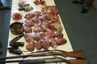 کشف و ضبط ۳ قبضه سلاح شکاری و مقداری گوشت مرال  در آمل و کیاسر