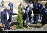 اردکانیان: روز درختکاری فرصتی برای توجه ویژه به پوشش سبز کشور/ تغییر الگوی فضای سبز شهری تهران در دستور کار کارگروه سازگاری با کم آبی