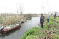 عملیات پاکسازی و جمع آوری دام های زیر آبی در لنگرود