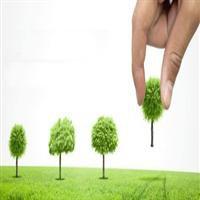 دورهمی سبز در منطقه ۱۳