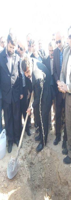 کاشت نهال به مناسبت روز درختکاری با حضور استاندار و مدیر کل مدیریت بحران خوزستان
