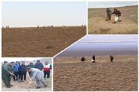 اجرای پروژه بذرپاشی در ۳۰۰ هکتار از اراضی شهرستان سربیشه