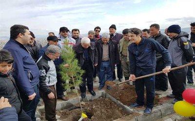 دکتر مجید مقدم رئیس شورای اسلامی شهر خوی :  ۵۰۰۰ اصله نهال در خوی کاشته شد