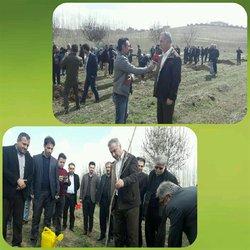 برگزاری مراسم روز درختکاری در تصفیه خانه فاضلاب امور آبفای شهری بوکان
