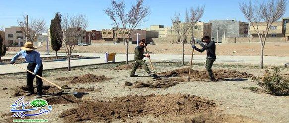 گزارش تصویری / استقبال از بهار /روایتی از اقدام و تلاش در حوزه فضای سبز