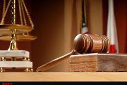 صدور حکم محکومیت شکارچیان غیر مجاز پرنده در ری