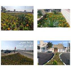 عملیات کاشت گل های فصلی توسط شهرداری شوشتر به اجرا درآمد