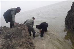 حضور محیطبانان اداره کل حفاظت محیط زیست استان گلستان در شهرستان گمیشان
