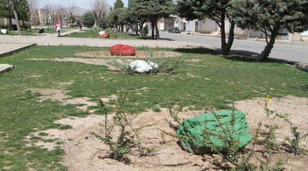 جایگذاری حدود ۲۵ سنگ رنگ آمیزی شده در بوستان ایثار (گزارش تصویری)