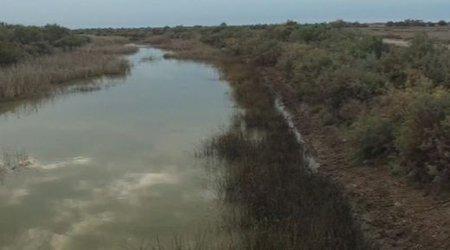 پرآبی فعلی رودخانه های گلستان ناشی از ذوب برف است