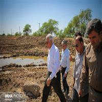 نوروزی: تا زمان اعلام نیاز مسئولان استانی در خوزستان میمانیم