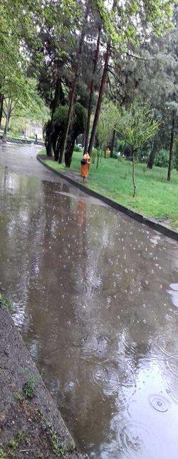 دوره بازگشت بارش های سال جاری در استان خراسان رضوی ۲۵ ساله محاسبه شده است