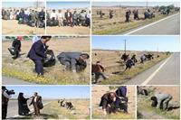 همزمان با گرامیداشت روز جهانی زمین پاک در بیرجند انجام شد: