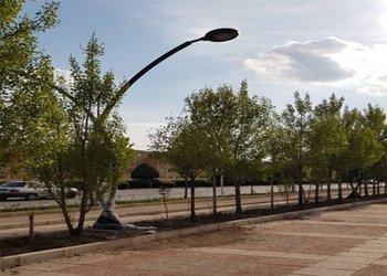 تامین روشنایی جاده سلامت بلوار الغدیر در راستای امنیت بهرهبرداران
