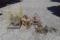 کشف یازده قطعه پرنده (کبک) وشش رشته دام از متخلفین زیست محیطی، توسط یگان حفاظت محیط زیست شهرستان رفسنجان