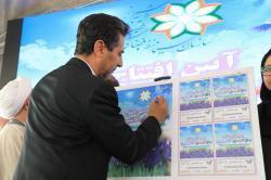 افتتاح باغ گل ها یک ظرفیت جدید به گردشگری شیراز اضافه کرد