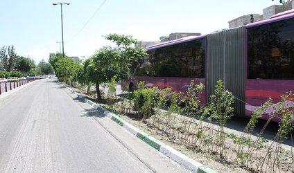 فضاهای سبز موجود در مسیر اتوبوسهای تندرو ترمیم میشوند
