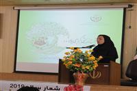 حضور مدیرکل حفاظت محیط زیست استان کرمان در همایش روز جهانی تنوع زیستی شهرستان جیرفت