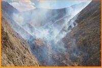 آتش سوزی منطقه حفاظت شده شاسکوه  در خراسان جنوبی مهار شد