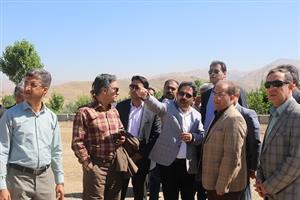 بازدید شهردار و اعضای شورای اسلامی شهر سنندج از روند اجرایی پروژه های عمرانی سطح شهر