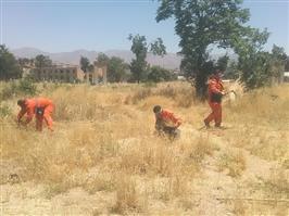 جمع آوری و پاکسازی علف های هرز آرامستان تایله توسط شهرداری منطقه دو سنندج