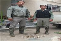دستگیری متخلفین شکارو صید درسه شهرمازندران