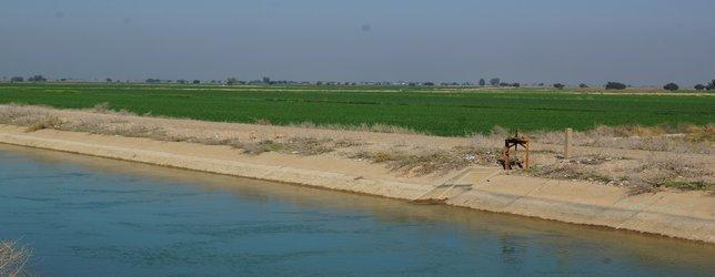 ۵۶ هزار هکتار از اراضی شمال خوزستان به کشت پاییزه و زمستانه اختصاص یافت