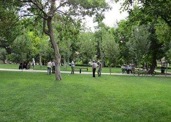 سومین مرحله از بازدیدهای ادواری پارک ها و فضای سبز شهری آغاز شد