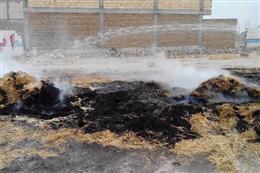 برخورد قاطع با عوامل آتش سوزی اراضی کشاورزی در ملارد