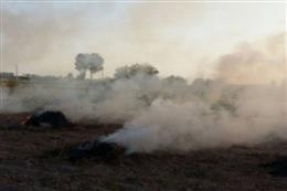 رئیس اداره حفاظت محیط زیست بهارستان: لزوم جلوگیری از پسماندسوزی کشاورزان توسط اداره جهاد کشاورزی