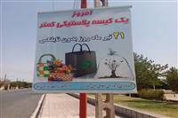 گرامیداشت روز جهانی نه به پلاستیک در شهر انار کرمان