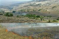 آتش سوزی مناطق آمل و نوشهر مهارشد