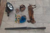 شکارچی یک راس آهو در سالروز ولادت امام مهربانی ها ، ضامن آهو به دام محیط بانان بم کرمان افتاد