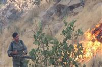 روزگار سخت این روزهای محیط بانان شهرستان چرام ازمبارزه با آتش تا تفنگ