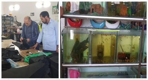 بازدید عضو شورای شهر از بازارچه خوداشتغالی و تولید فرش شهرداری چناران