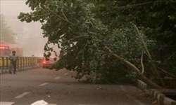 توصیه های مدیریت بحران شهرداری تبریز به منظور جلوگیری از بروز حوادث و خسارات ناشی از وزش تندباد شدید و بارش باران