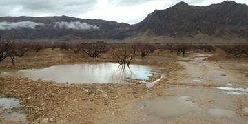 ادامه بارشها تا اواسط هفته آینده/ هشدار آبگرفتگی معابر و کاهش دما
