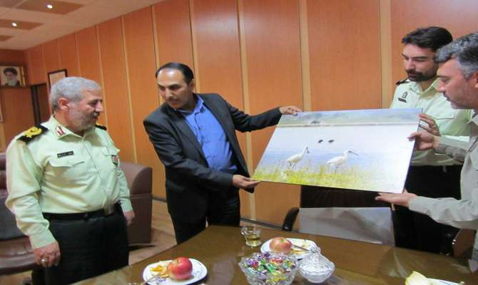 درخواست محیط زیست همدان از نیروی انتظامی استان برای جلوگیری از قاچاق پرندگان شکاری