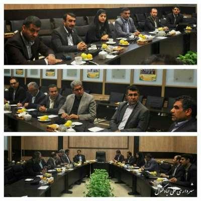 بازدید شهردار و اعضای شورای اسلامی شهر علی