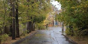 برف و باران در برخی مناطق کشور/ بارشهای تازه در تهران از شنبه